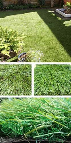 artificial, grass, fake, uk, manufacturer, synthetic, grasses, lawns, landscaping, lawn products, pets